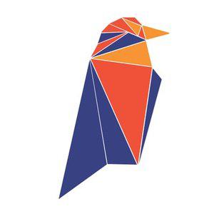 Ravencoin icon